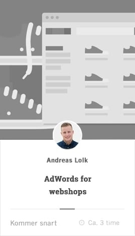 adwords for webshops kursus