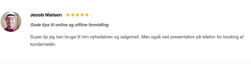 Jacob Nielsen gode tips til online og offline formidling anmeldelse kursus